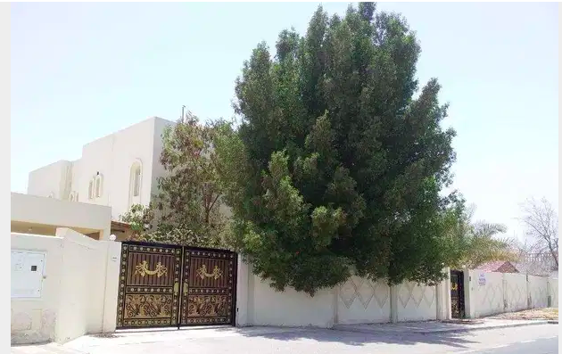 Residential Developed 7+ Bedrooms U/F Standalone Villa  for sale in West-Bay , Al-Dafna , Doha-Qatar #7788 - 1  image